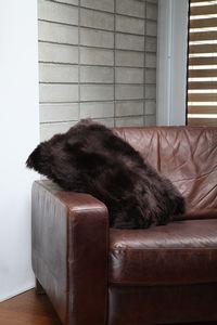 Fibre by Auskin Lambskin Cushion in Chocolate