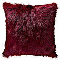 Cloud9 Design Lhasa Decorative Pillows