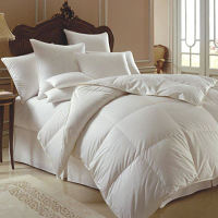 Downright Down Comforters & Pillows & Bedding Accessories