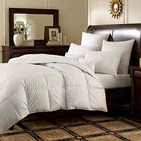 Downright Logana Comforter & Pillows