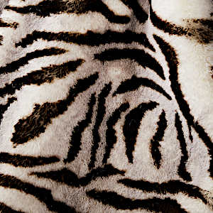 Evelyne Prelonge White Tiger Faux Fur Swatch
