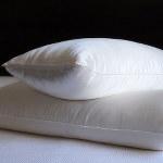 Mari Ann Silk Filled Pillow with Silk Cover
